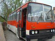 Икарус-256 в г.Могилеве
