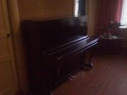 продам пианино владимир. недорого