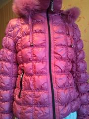 Зимние Куртки Купить В Могилеве