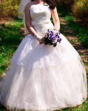 Купить Платье В Могилеве Фото И Цены